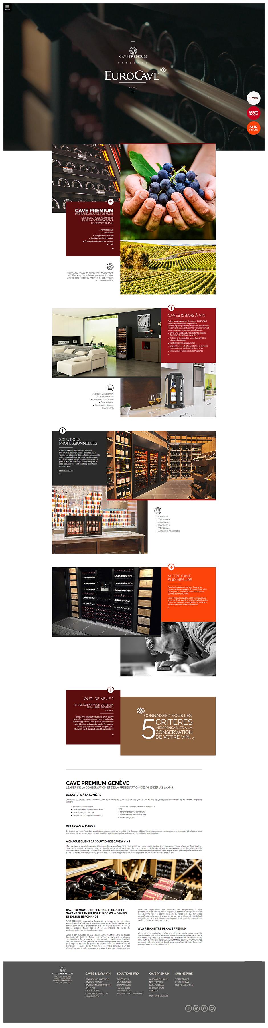 Homepage site Cave Premium